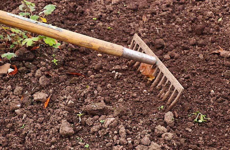 Ville de saint-Eustache - Le jardinier paresseux - Conseils de jardinage