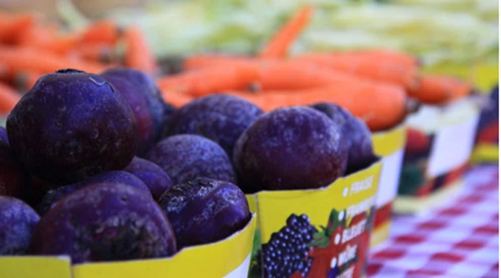 Ville de saint-Eustache - Le marché public du Vieux-Saint-Eustache sera ouvert dès le samedi 30 juin pour la saison estivale